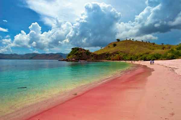 Pantai berpasir pink di pulau komodo