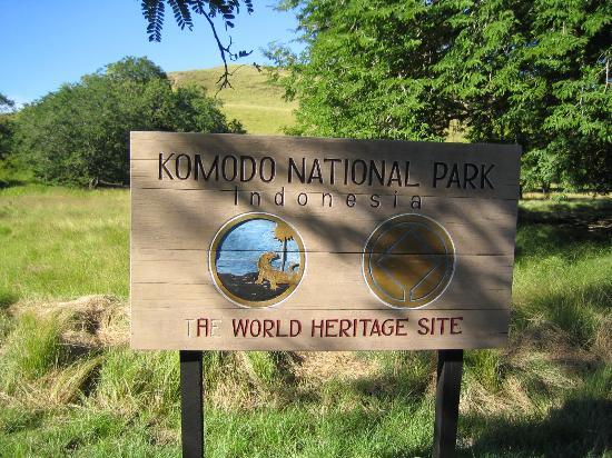 Welcome Komodo National Park